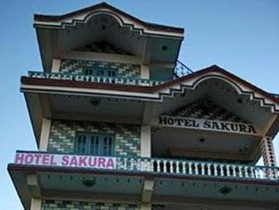 Hotel Sakura 樱花酒店