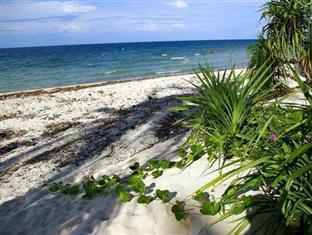 拉埃斯特雷海滩度假村 薄荷岛 - 沙滩