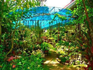 La Estrella Beach Resort Bohol - Ogród