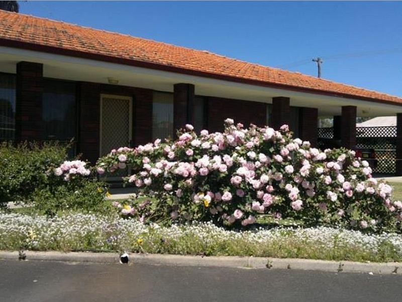Donnybrook Motel Motor Lodge - Hotell och Boende i Australien , Donnybrook