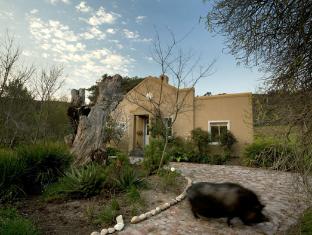 Plumbago Cottage Stellenbosch - Hotellet udefra