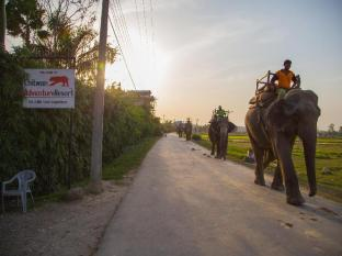 Chitwan Adventure Resort Taman Negara Chitwan - Bahagian Dalaman Hotel