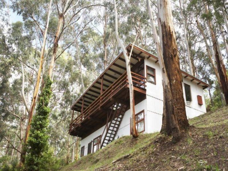 The Treehouse - Hotell och Boende i Australien , Great Ocean Road - Wye River