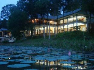 Lake Chini Resort 清宁湖度假村