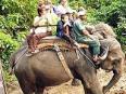 野生動物探險度假村 奇旺國家公園 - 酒店周邊