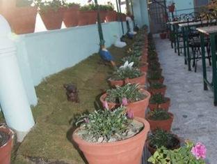 Rosebud Hotel & Resort Kathmandu - Garden
