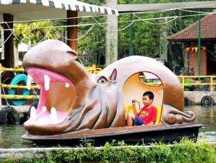 Royal Safari Garden Resort & Convention Puncak - Paddle boat