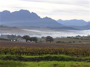 Allegria Guesthouse & Vineyards Stellenbosch - Early Morning View