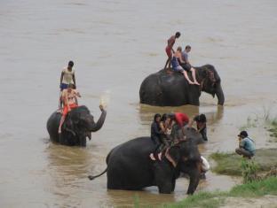 Hotel River Side Chitwan narodni park - rekreacijske zmogljivosti
