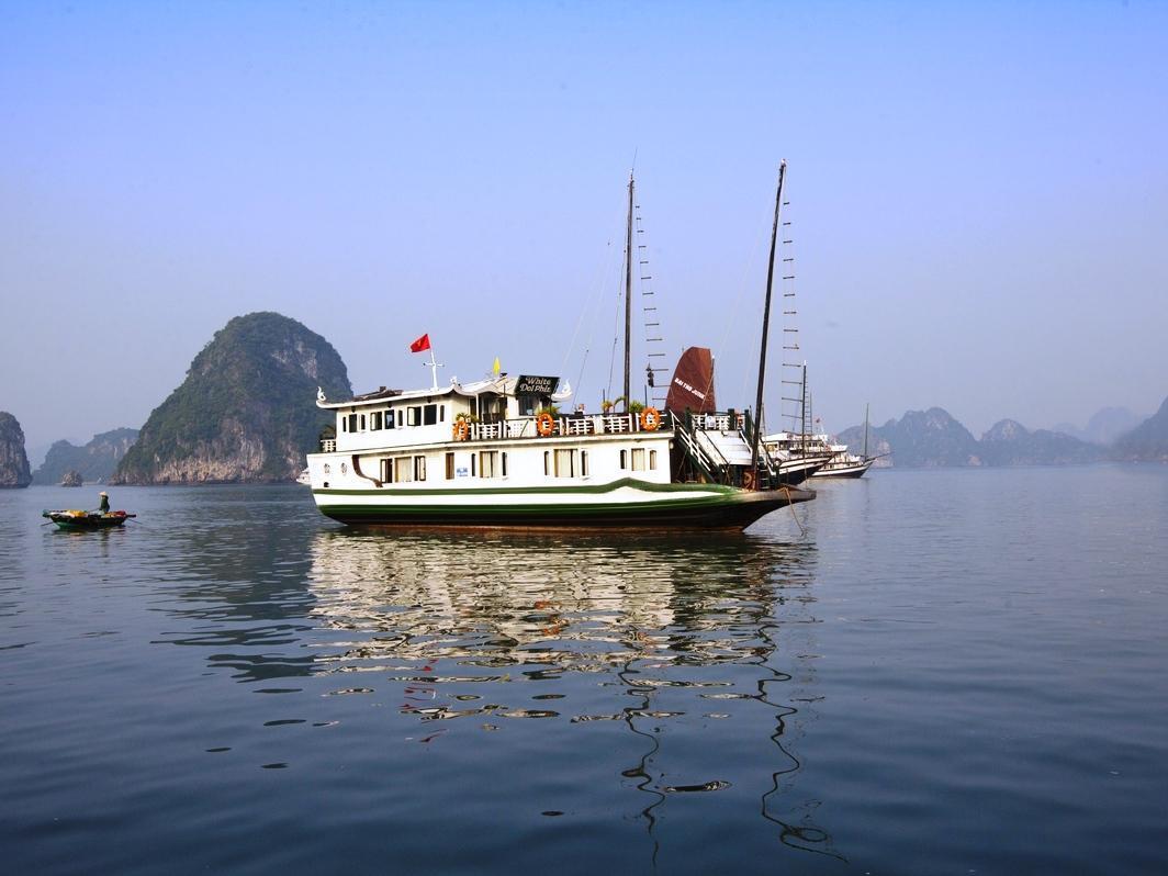 White Dolphin Charter Cruise - Hotell och Boende i Vietnam , Halong