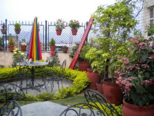 Kathmandu Peace Guest House Kathmandu - Rooftop Garden