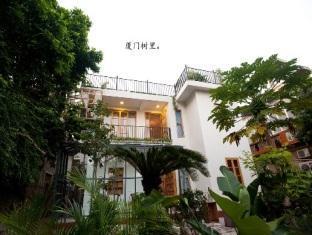 Xiamen Trees Inside Hotel - Xiamen