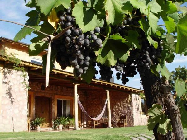 Finca Adalgisa - Hotels and Accommodation in Argentina, South America