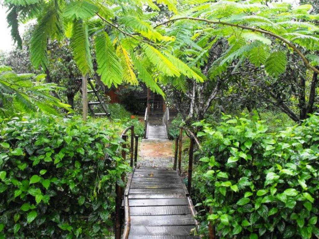 Ecologycal Garden Ut Phuong Resort - Hotell och Boende i Vietnam , Phu Quoc Island