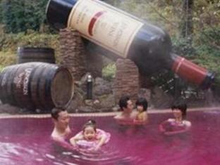 Hakone Kowakien Yunessun Inn Spa Resort Hakone - Wine Spa