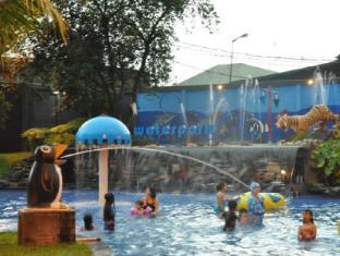 Oasis Siliwangi Boutique Hotel Bandung - Swimming Pool