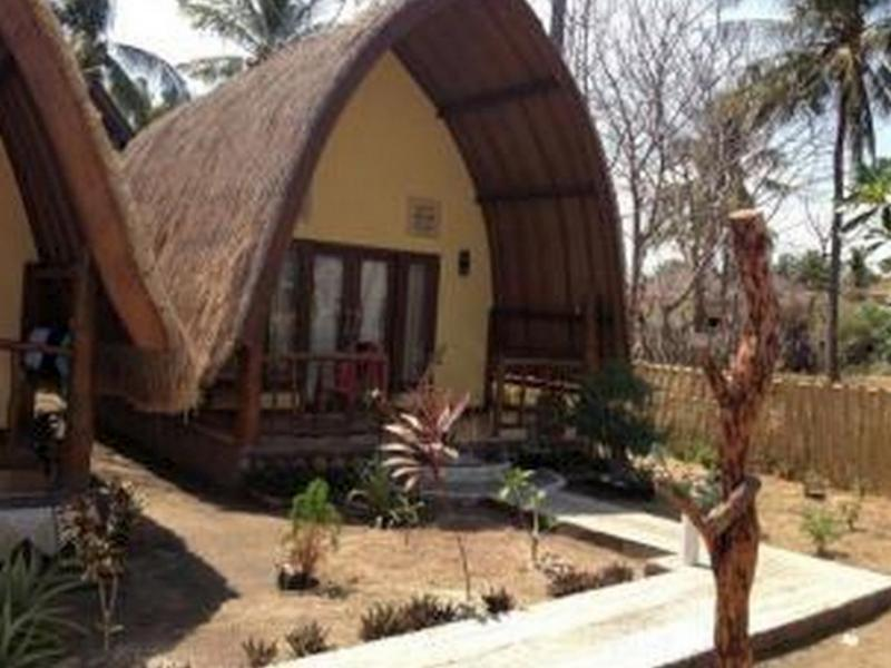 Turtle Bungalow - Hotels and Accommodation in Indonesia, Asia