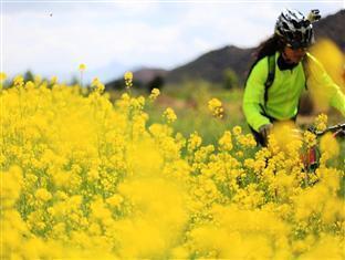 Bike Lijiang Lodge & Club