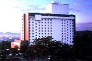 โรงแรมรีสอร์ทอื่นๆ