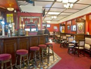 Viking Lodge Hotel Dublin - Pubi/Aula