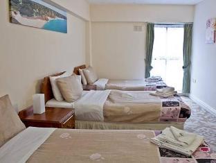 Viking Lodge Hotel Dublin - Hotellihuone