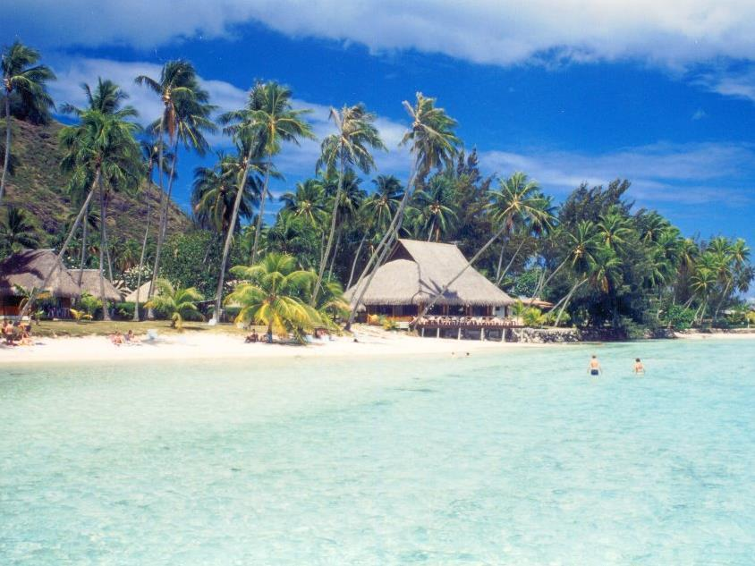 Les Tipaniers Hotel - Hotels and Accommodation in French Polynesia, Pacific Ocean And Australia
