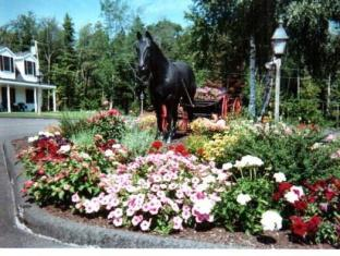 Black Horse Inn לינקולנוויל - גינה