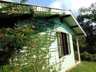 บ้าน หมาก แดง เกาะหมาก (ตราด) - บ้านพัก