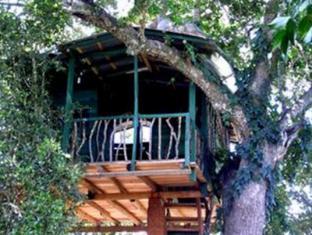 Diviya Safari Camping Resort | Sri Lanka Budget Hotels
