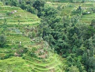 Shangrilah Villas Bali - View
