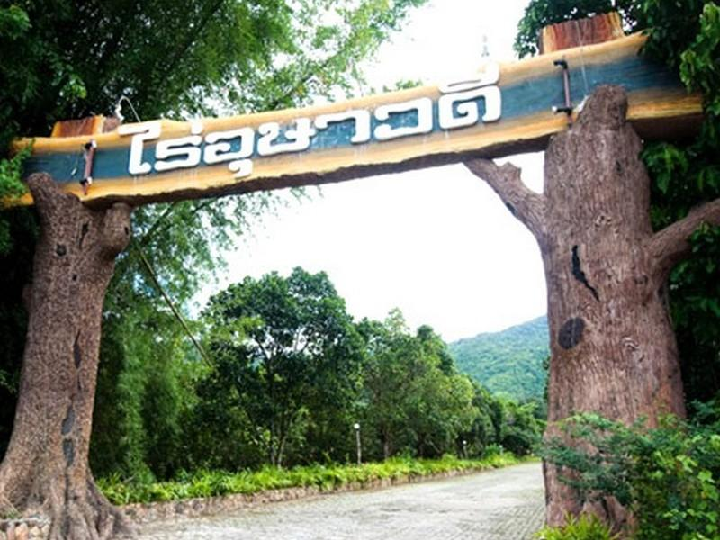 ไร่อุษาวดี รีสอร์ท : ที่พักสวนผึ้ง จ.ราชบุรี