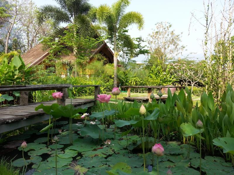 Pura Vida Pai Resort - Hotels and Accommodation in Thailand, Asia