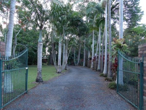 Emerald Tropical Palms B&B - Hotell och Boende i Australien , Coffs Harbour