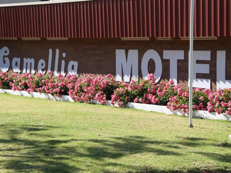 Camellia Motel - Hotell och Boende i Australien , Narrandera