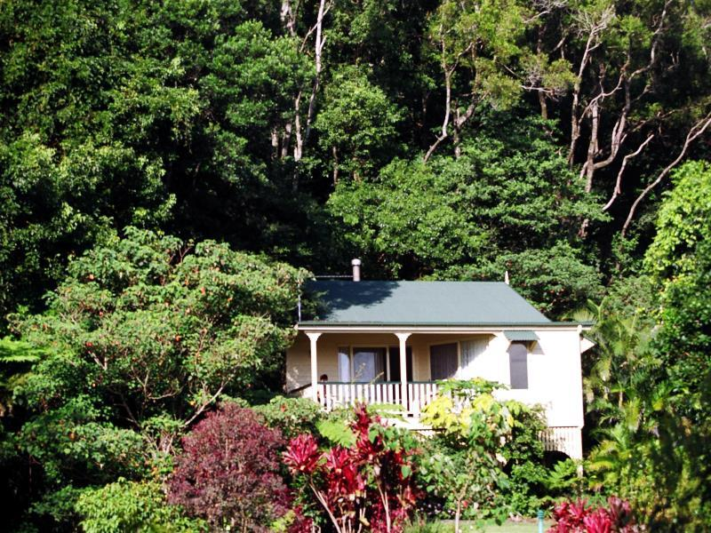 The Falls Rainforest Cottages - Hotell och Boende i Australien , Sunshine Coast