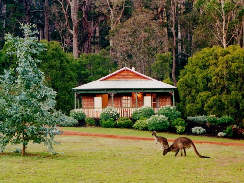Karri Valley Chalets - Hotell och Boende i Australien , Pemberton