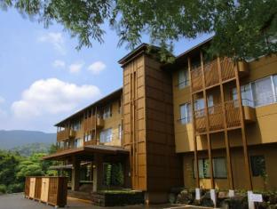 hotel Mount View Hakone Ryokan
