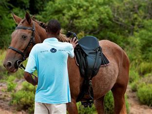 White Pearl Resorts Zitundo - Horseback riding