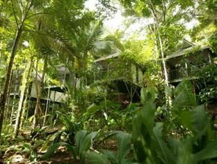 Daintree Eco Lodge & Spa Hotel - Room type photo