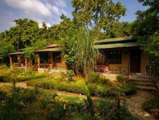 Chitwan Gaida Lodge Chitwan National Park - Hotel Exterior