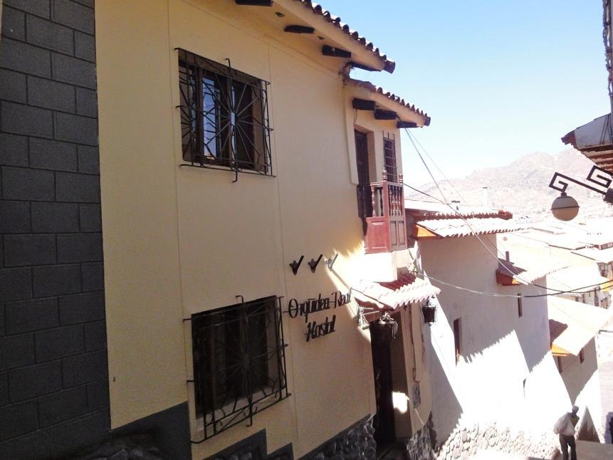 Orquidea   Real   Hostal - Hotels and Accommodation in Peru, South America