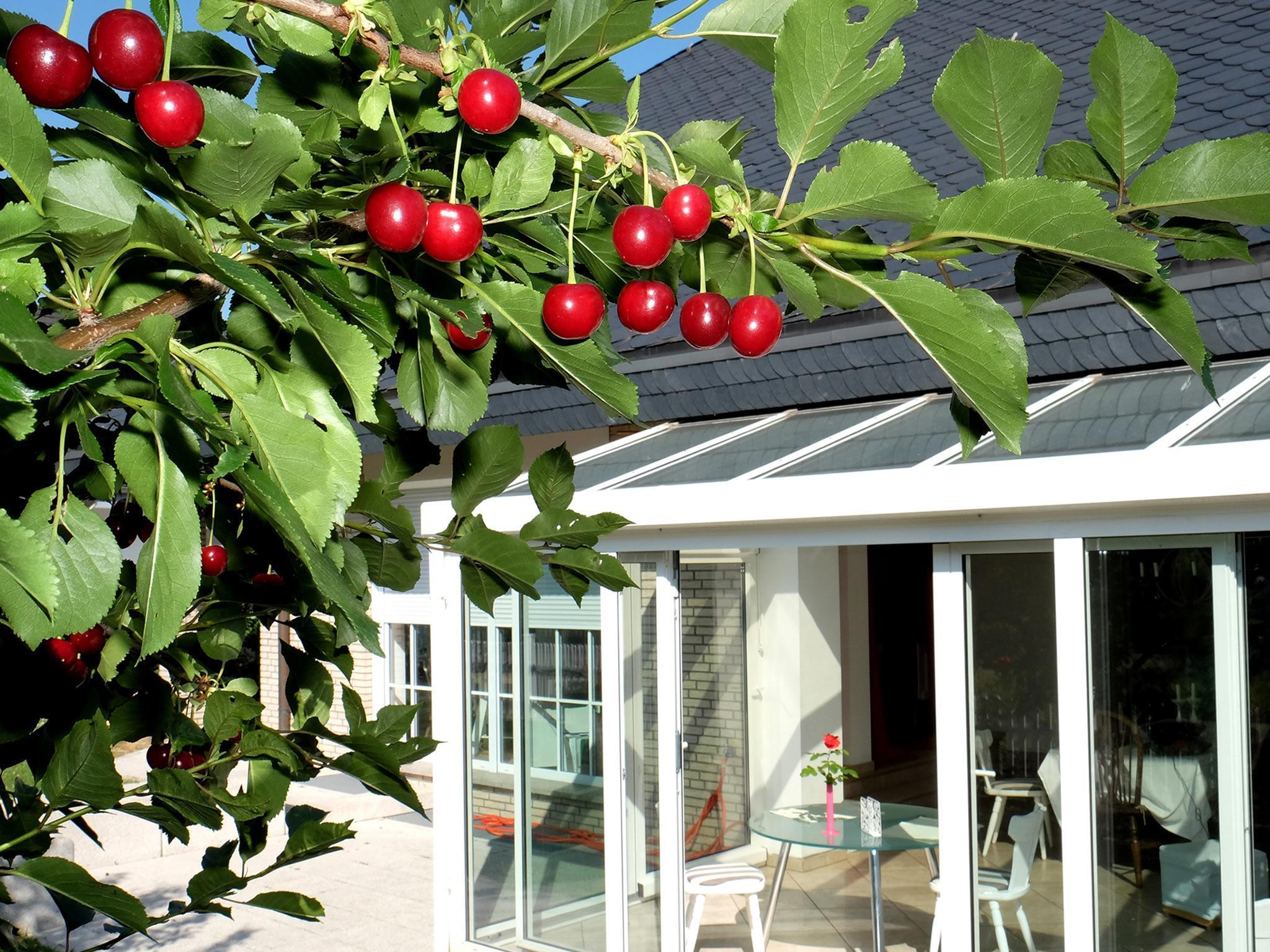 Villa Orchard