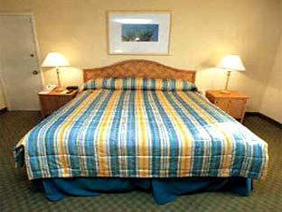 Wyndham Orlando Resort Orlando (FL) - Guestroom