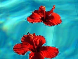 Bellapais Gardens Hotel Kyrenia - Swimming Pool
