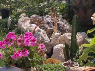 Salute Emozioni Allenamento Villa Varna - Garden