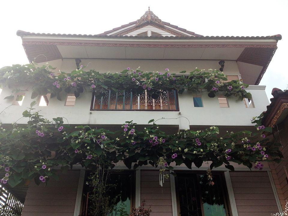 Loymanee House - Ayutthaya