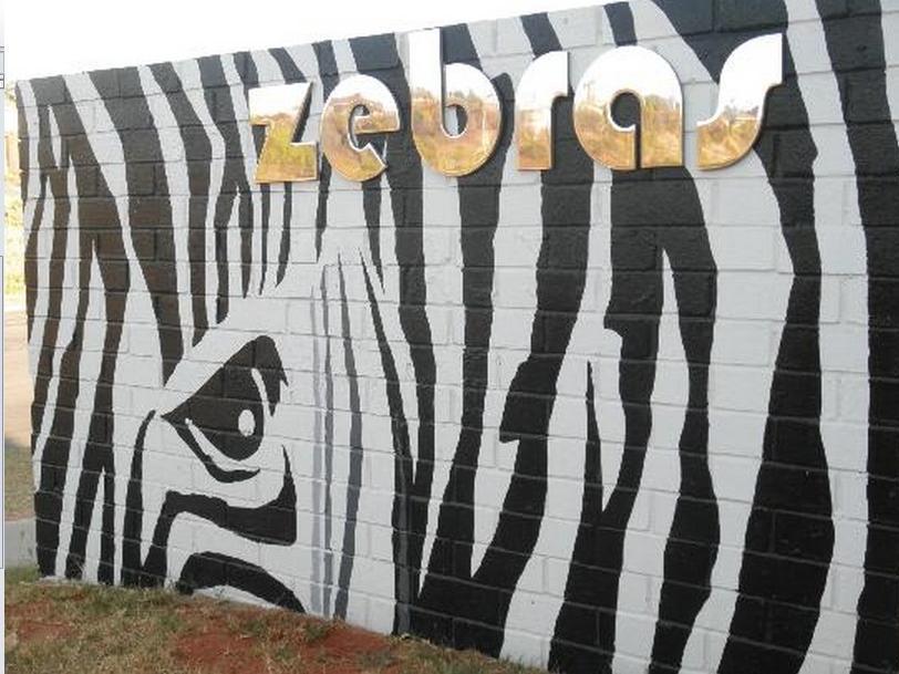 Zebras Guest House