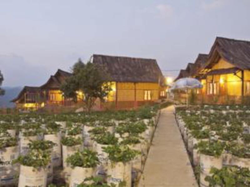 Sawung Gawir Restaurant and Bungalow Ciwidey