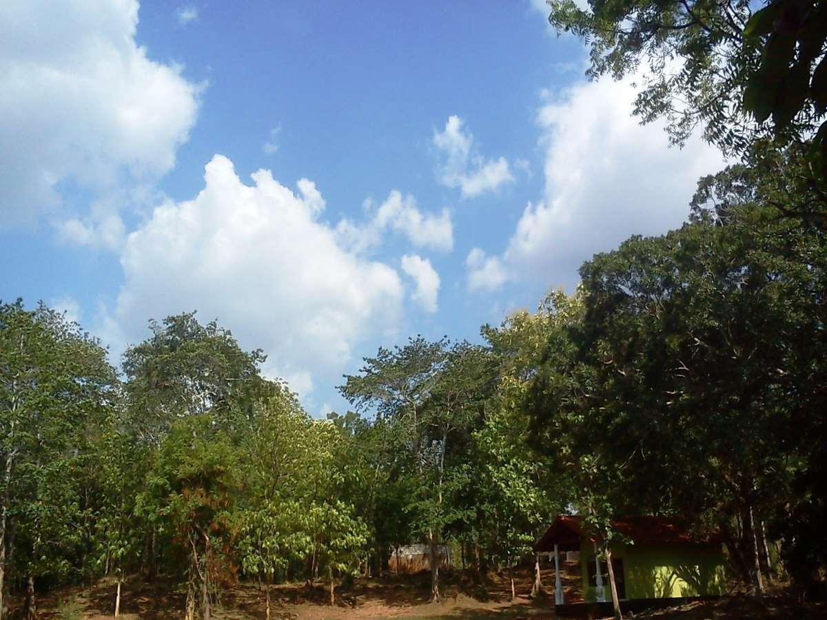 Teakvilla Hotel and Restaurant - Hotels and Accommodation in Sri Lanka, Asia