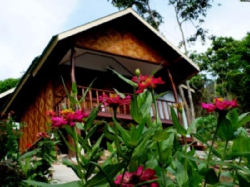 Phi Phi Jungle Hill Bungalow - Hotels and Accommodation in Thailand, Asia